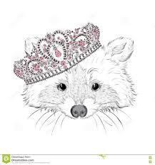 hipster raccoon in the crown vector illustration for greeting
