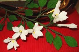 Stephanotis Flower Paper Flower Jasmine Stephanotis Flower 13 Youtube
