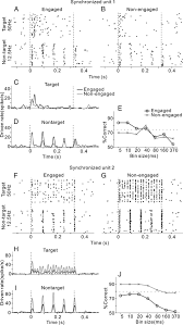 behavioral modulation of neural encoding of click trains in the