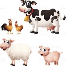 cartoon graphics of chicken cow sheep and pig stock vector art