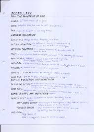 vivianh 2013 ms hui u0027s teaching blog page 4