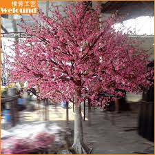 cherry blossom tree we found limited part 2