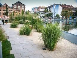 228 best path images on pinterest landscape design landscaping