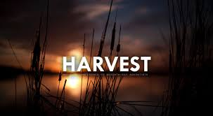 montana conference of seventh day adventist church harvest
