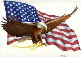 What Does The Usa Flag Represent American Flag Bald Eagle Pictures