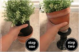 Herb Topiaries Diy Topiary Centerpiece In Just 30 Seconds