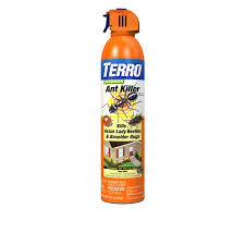 Off Backyard Spray Reviews Terro Perimeter Ant Bait Plus The Best Ant Killer For Lawns