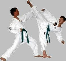 Taekwondo. Images?q=tbn:ANd9GcQOi_JdSzEWMIxcWFMETCdnFahg434L3HAxc5v9jcqE_Ky1P0Rl
