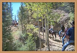 Price Of Rides At Winter River Stables Trail Rides