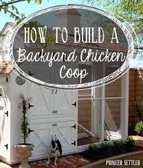 best 25 backyard chicken coop plans ideas on pinterest diy