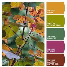 978 best flores con guias de color images on pinterest colors