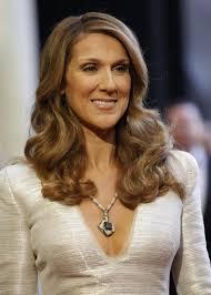celine dion net worth celebrity plastic surgery