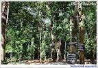 วัดป่านานาชาติ อุบลราชธานี ทัวร์ออนไทยคอทคอม