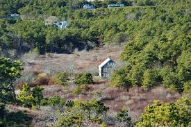 cranberry bogs cape cod search in pictures