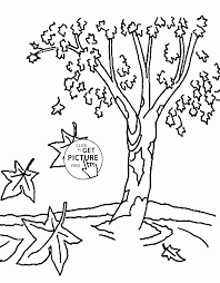 fall tree coloring pages for kids nature printables free wuppsy com