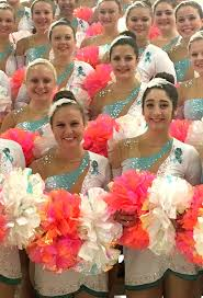 65 best bling images on pinterest dance costumes rhinestones