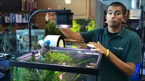 Led Aquarium Light Fixtures Halo Led Pendant Freshwater Aquarium Light Fixture Aquatic