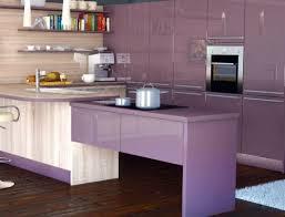 purple kitchen ideas purple kitchen cabinets marti style kitchen cabinets