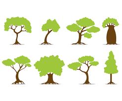 set of tree vector icons vector art u0026 graphics freevector com