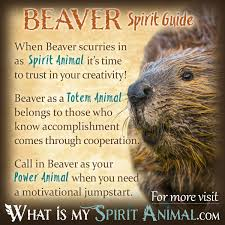 beaver symbolism meaning spirit totem power