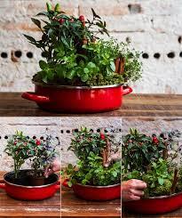 kräutertopf küche mein schöner kräutergarten in der küche kräutergarten anlegen und