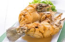 fish cuisine fish