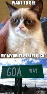 Frown Cat Meme - 30 grumpy cat funny quotes quoteshumor com