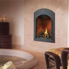 Best Direct Vent Gas Fireplace by Efficient Direct Vent Gas Fireplace