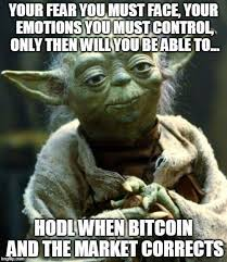 Correction Meme - control of emotions during market correction steemit