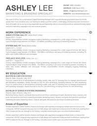 Resume Sample Computer Science by Resume Format Marketing Professional