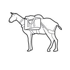 Get Your Goat Rentals by Go Llama Goat Dog Mule Or Partner Packing Backpacker