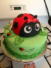 ladybug birthday cake www facebook com briannacaughroncakes