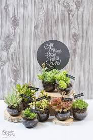 succulent wedding favors 10 fabulous party favors for adults