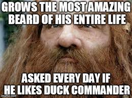 Bearded Guy Meme - image tagged in bearded guy problems imgflip