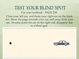 Blind Spot Left Eye Sensation And Perception Chapter 6 Ppt Video Online Download