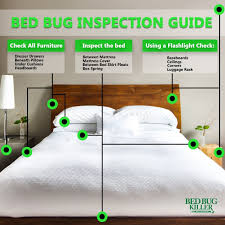 How To Make A Round Bed Mattress by Amazon Com Eco Defense Bed Bug Killer Natural Organic Formula