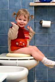 Potty Seat Or Potty Chair Potty Chair Guide We Review The Best Potty Training Gear
