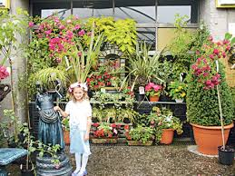 advertiser ie flower power the big value garden centre and florist