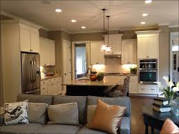 Kitchen Cabinets Companies Kitchen Modern Kitchen Cabinets For Less Kitchen Cabinet
