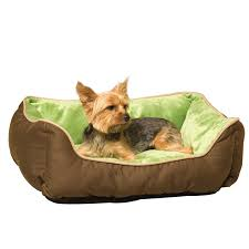Dog Bed With Canopy Amazon Com K U0026h Manufacturing Self Warming Lounge Sleeper Small