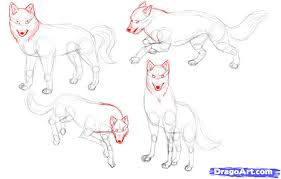draw wolves step by step drawing sheets added by justme april