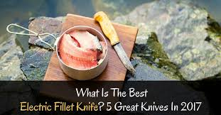 what is the best electric fillet knife 5 great knives in 2017