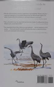 the sibley guide to bird life and behavior david allen sibley