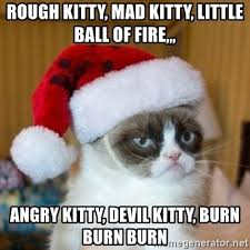 Mad Kitty Meme - rough kitty mad kitty little ball of fire angry kitty devil