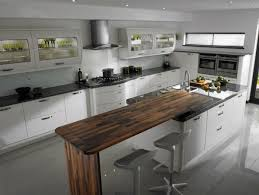 Contemporary Kitchens Designs Contemporary Modern Kitchen Ideas