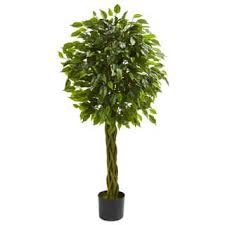 ficus artificial plants for less overstock