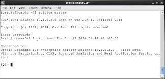 Oracle Drop Table If Exists Performing Backup And Recovery
