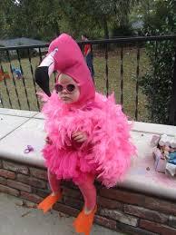 Halloween Kid Costumes 25 Halloween Costumes Infants Ideas