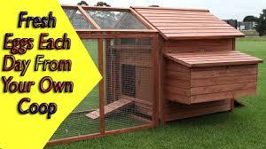 chicken coop floor plan how to build a chicken house chicken coop ideas plans youtube