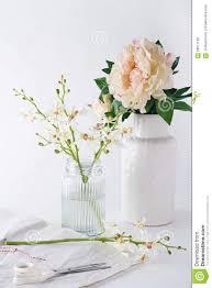Home Decoration Flowers Preparing Orchids Cut Flowers In Vases For Home Decoration Stock